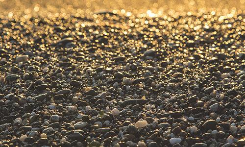 noisetier et pierres semi-precieuses